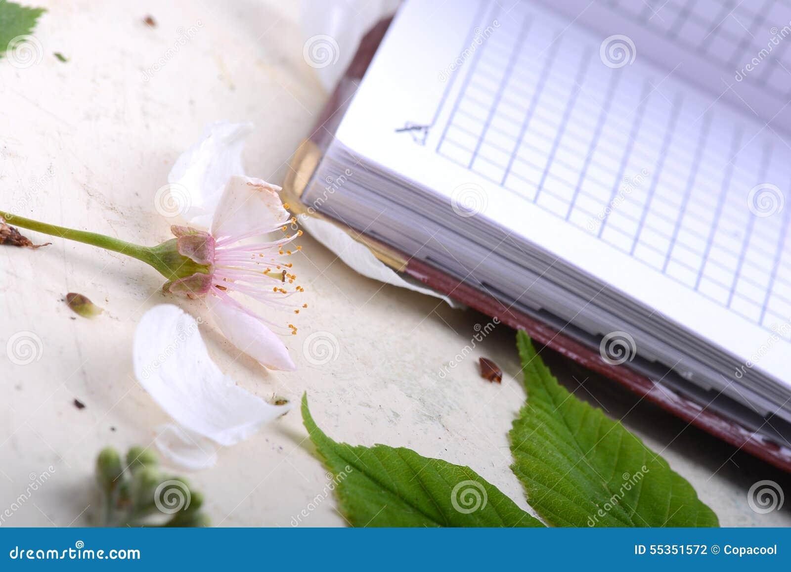 Taccuino della carta in bianco su fondo d annata bianco con gli elementi scrapbooking