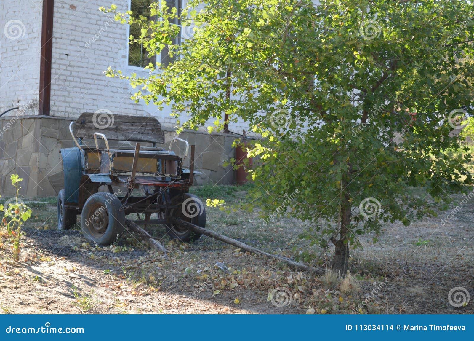 Tachanka viejo cosaco en un ethnocomplex en el Don