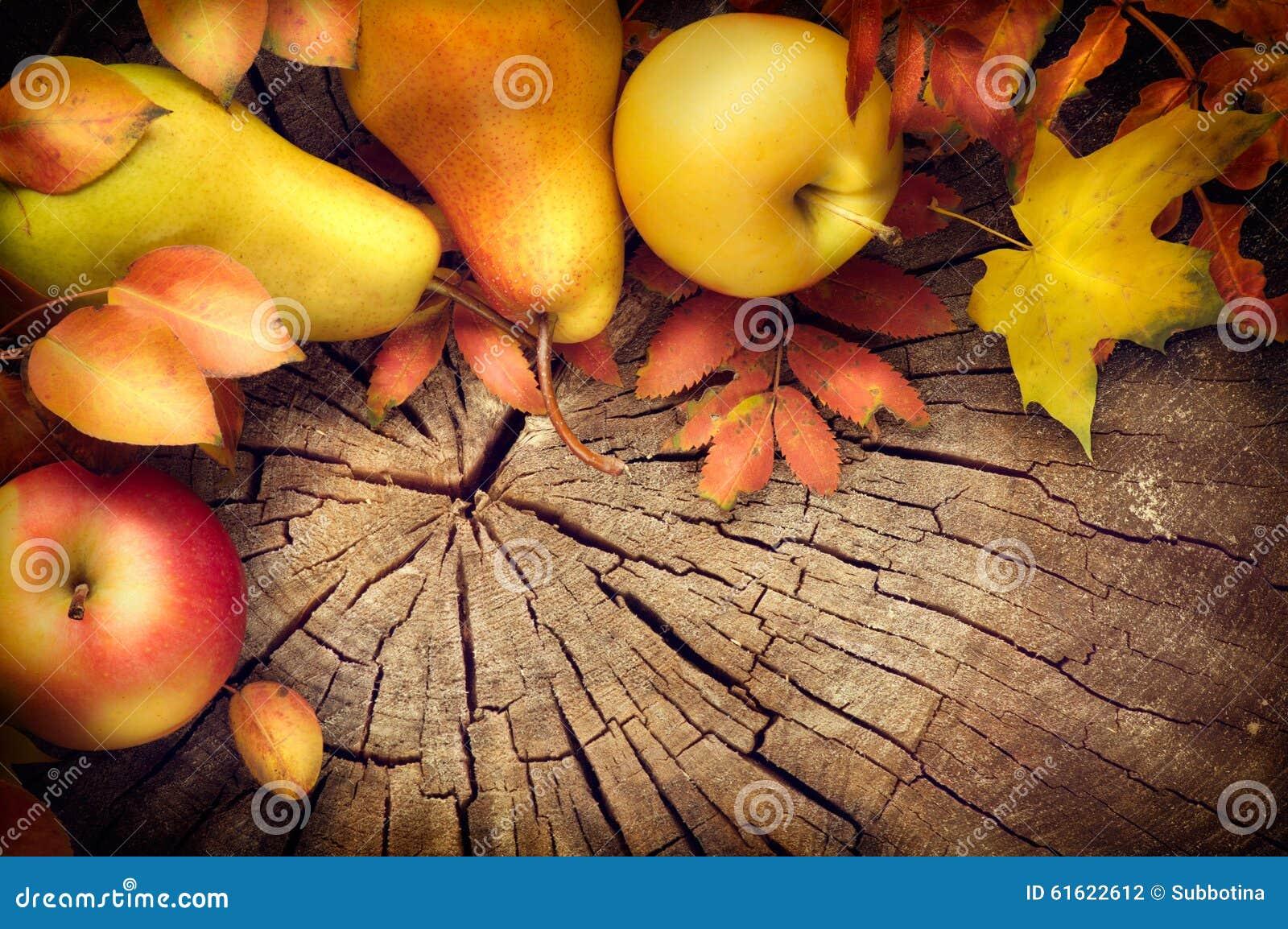 Tacksägelserambakgrund Höstsidor, äpplen och päron