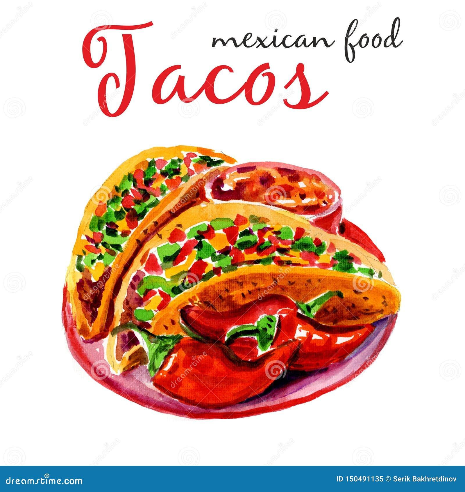 Tacos Illustration d aquarelle Conception ?l?gante avec l illustration de croquis du croquis mexicain de cuisine Tacos d isolemen