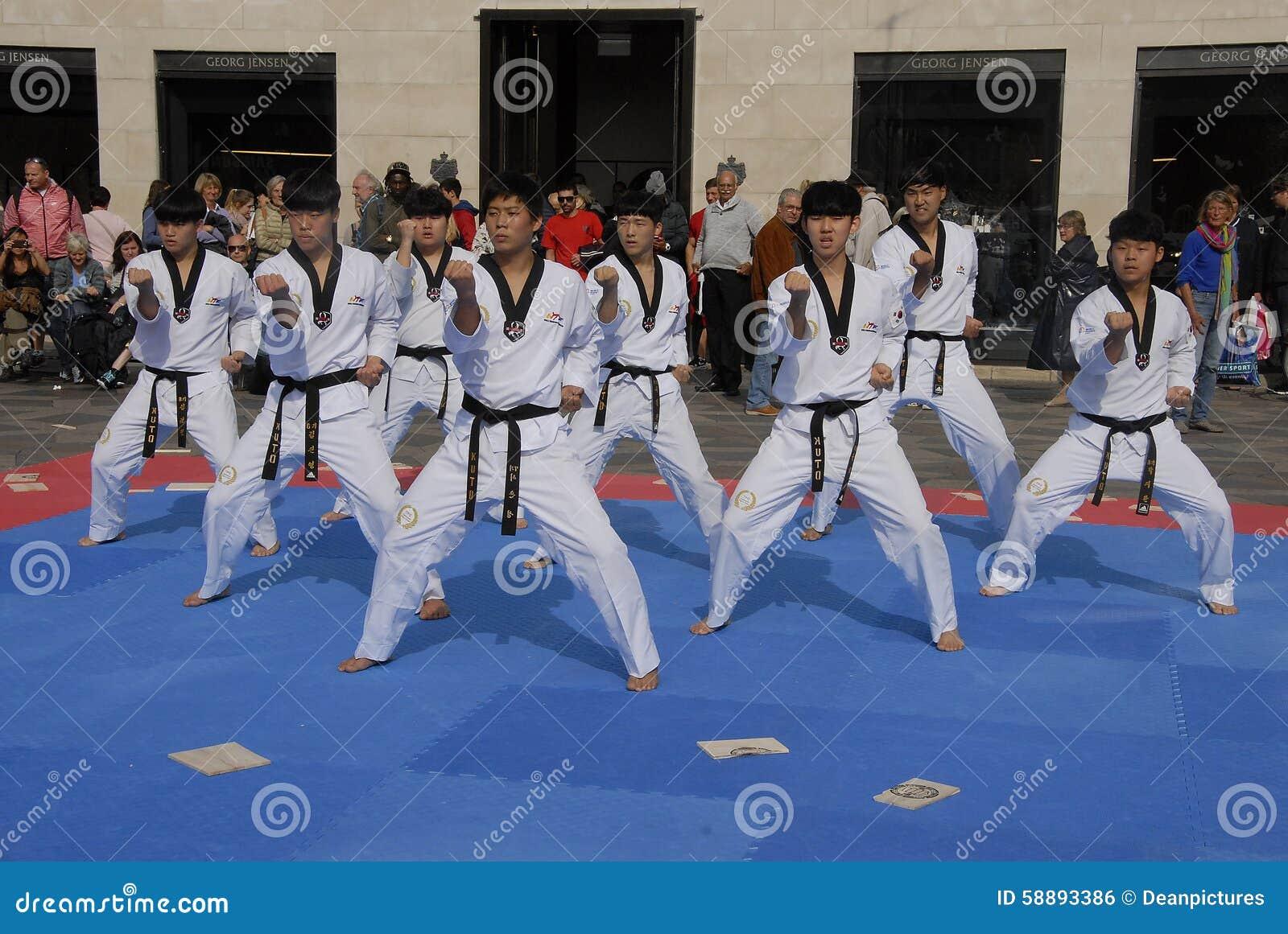 Taekwon do peace korpsen