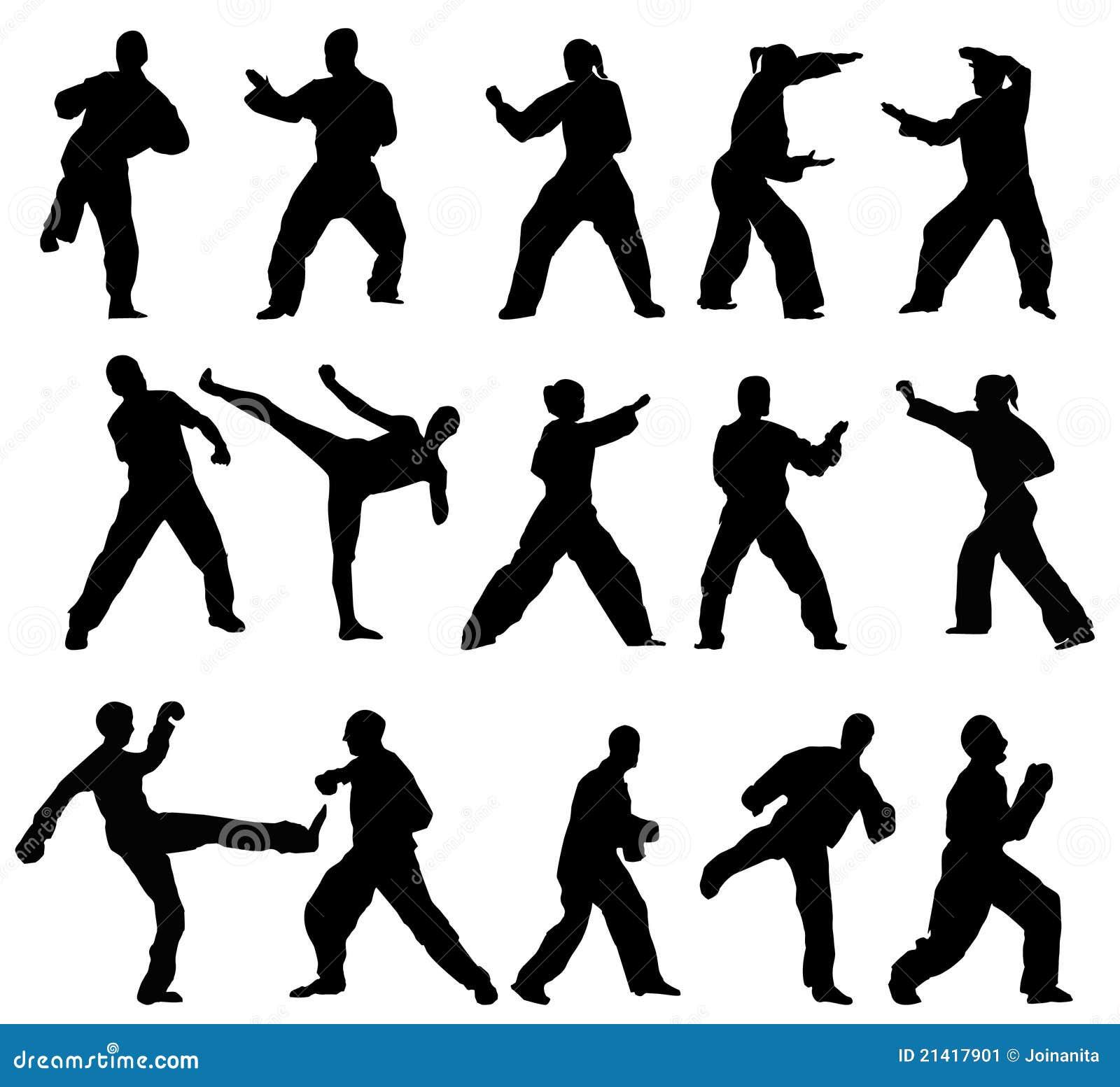 Taekwondo-fighter Stock Image - Image: 21417901