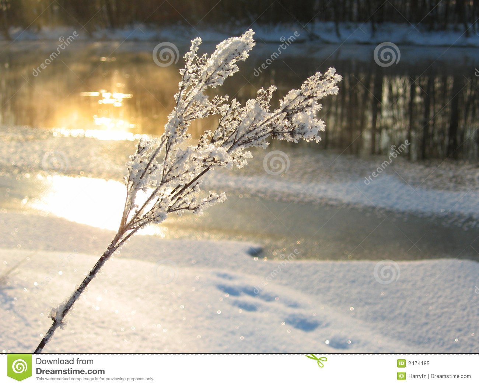 Tageslicht im Winter