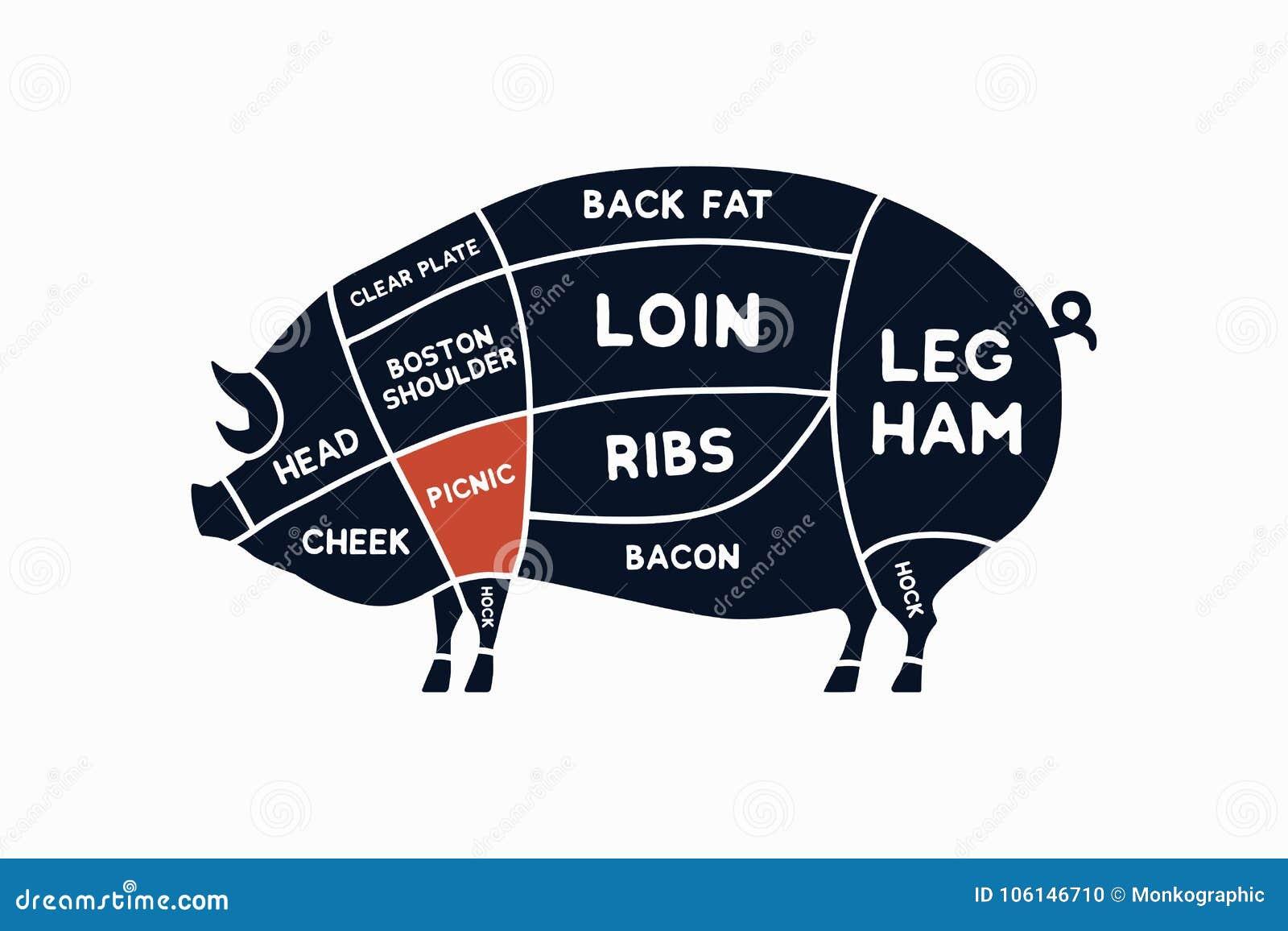 Tagli di carne Diagrammi per di macelleria Schema di carne di maiale Carne di maiale animale della siluetta