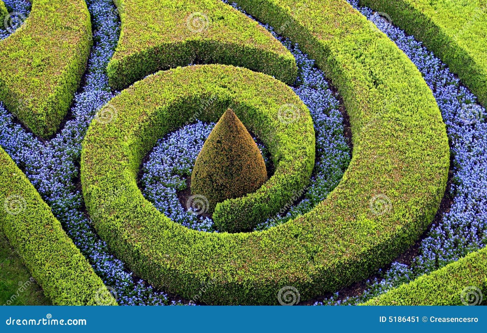 Tagli i cespugli ed i fiori immagine stock immagine 5186451 for Cespugli giardino