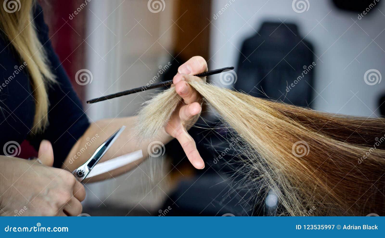 Taglio dei capelli nel salone di bellezza