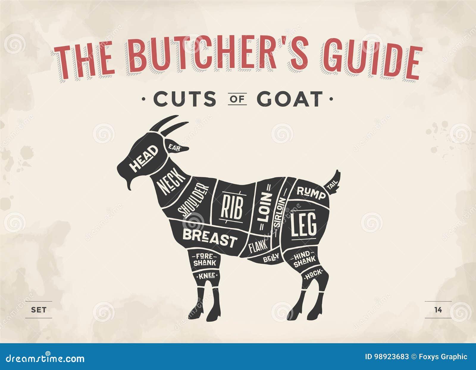 Taglio dell insieme della carne Diagramma del macellaio del manifesto, schema - capra