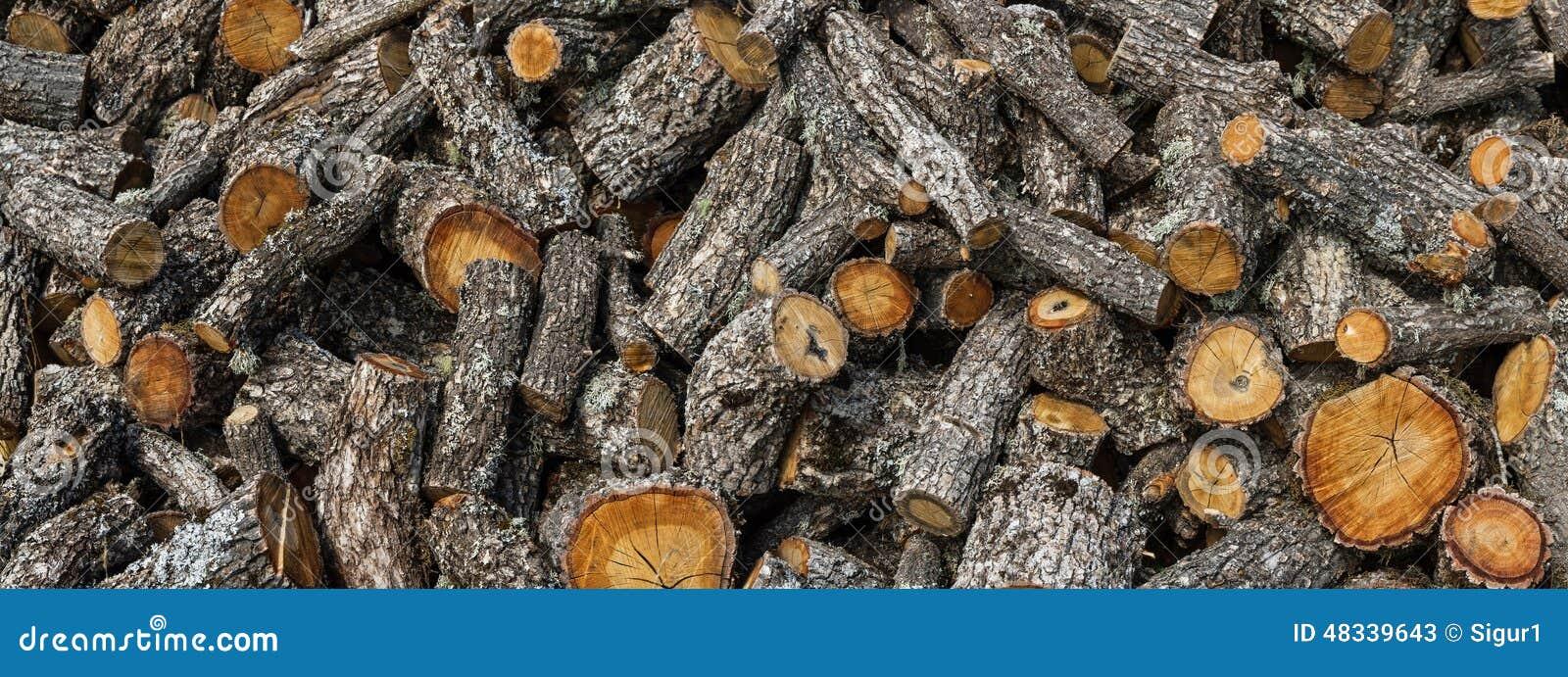Taglio della legna da ardere della quercia immagine stock for Legna da ardere prezzi