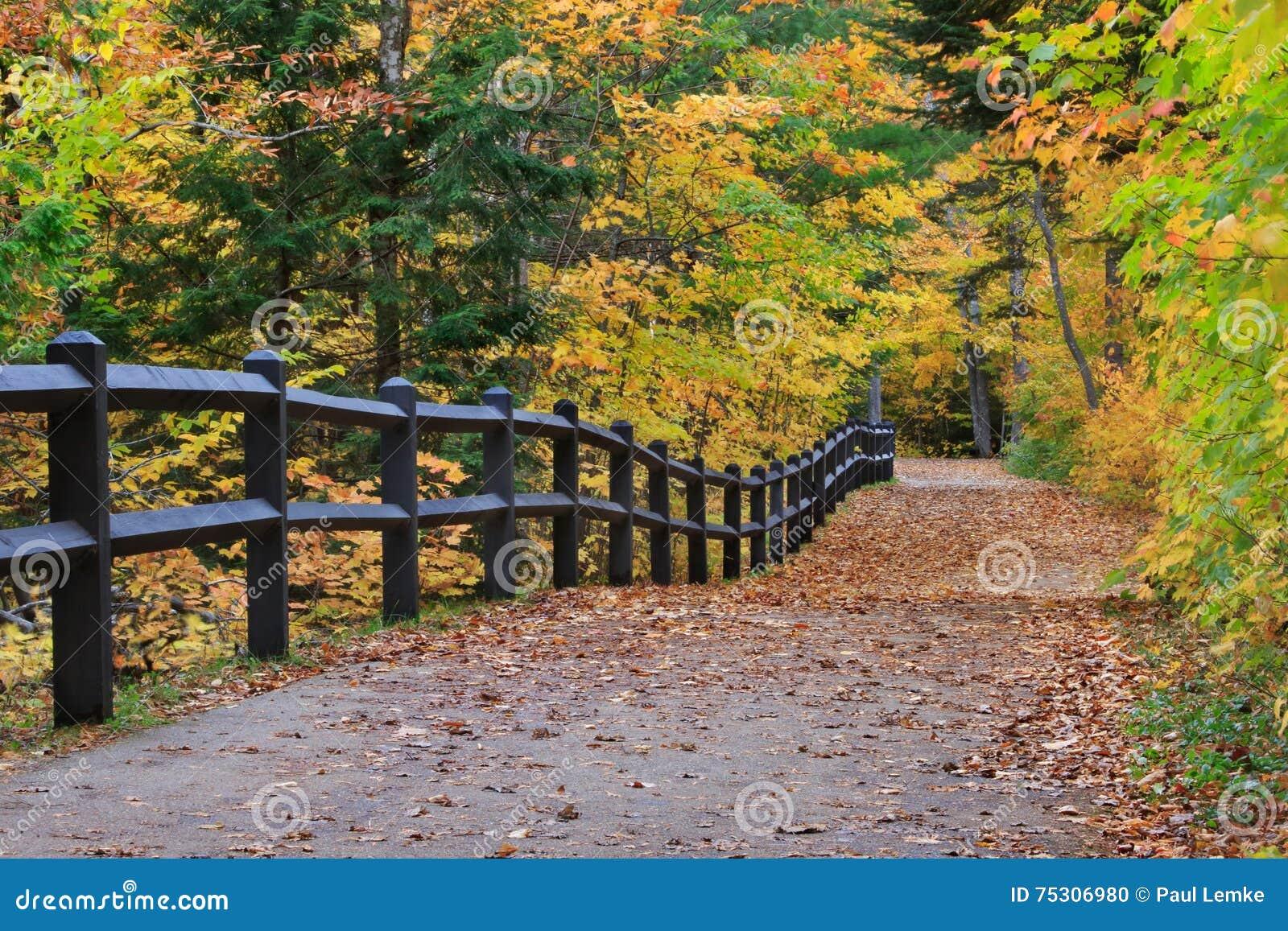 Tahquamenon fällt Weg im Herbst