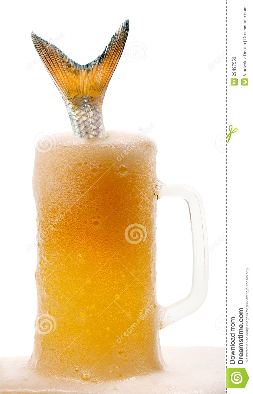 Tail fish in beer stock image image of handcarves drink for Fish and beer