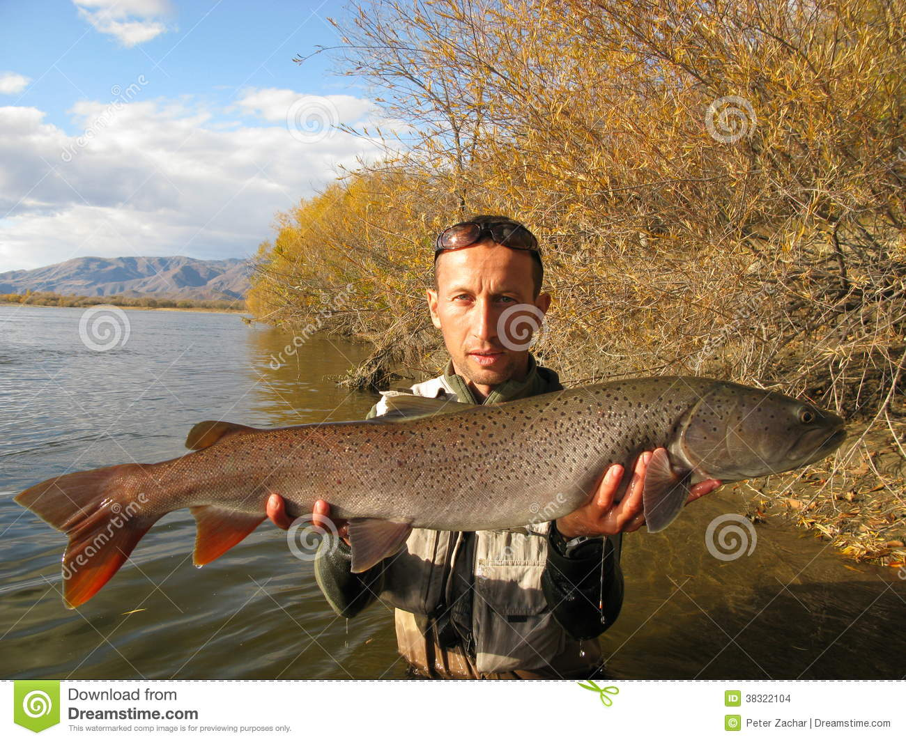 Taimen fishing mongolia stock images image 38322104 for Taimen fishing mongolia