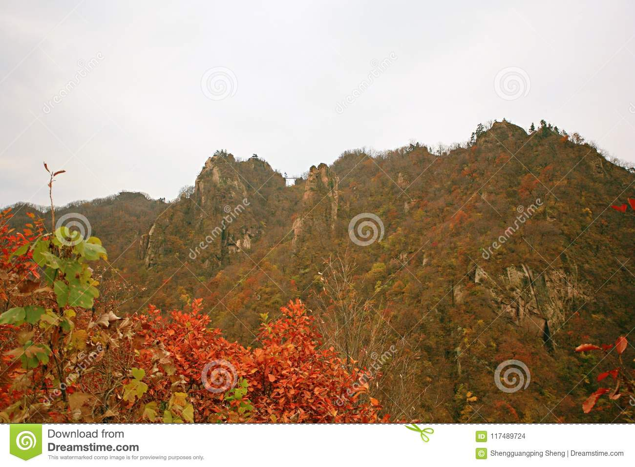 Taishan occidental, Ruyang