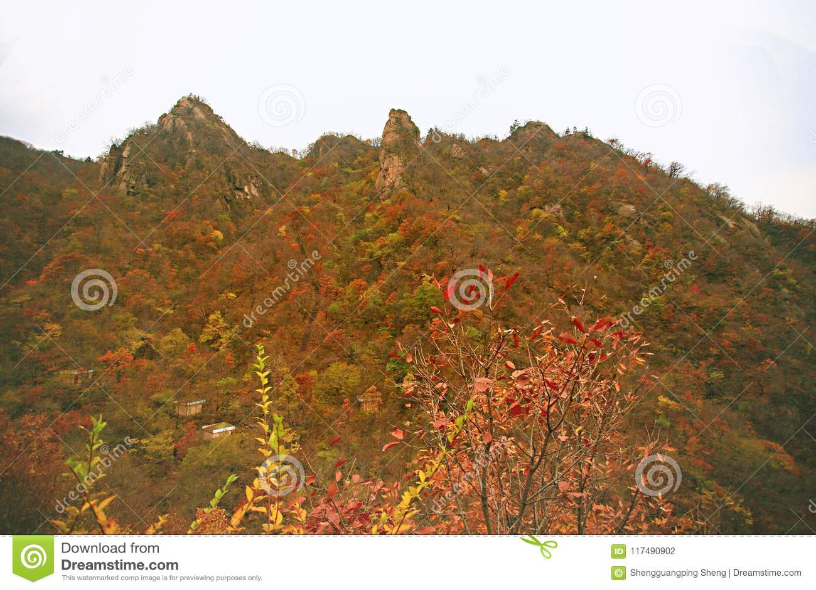 Taishan occidental, Ruyang