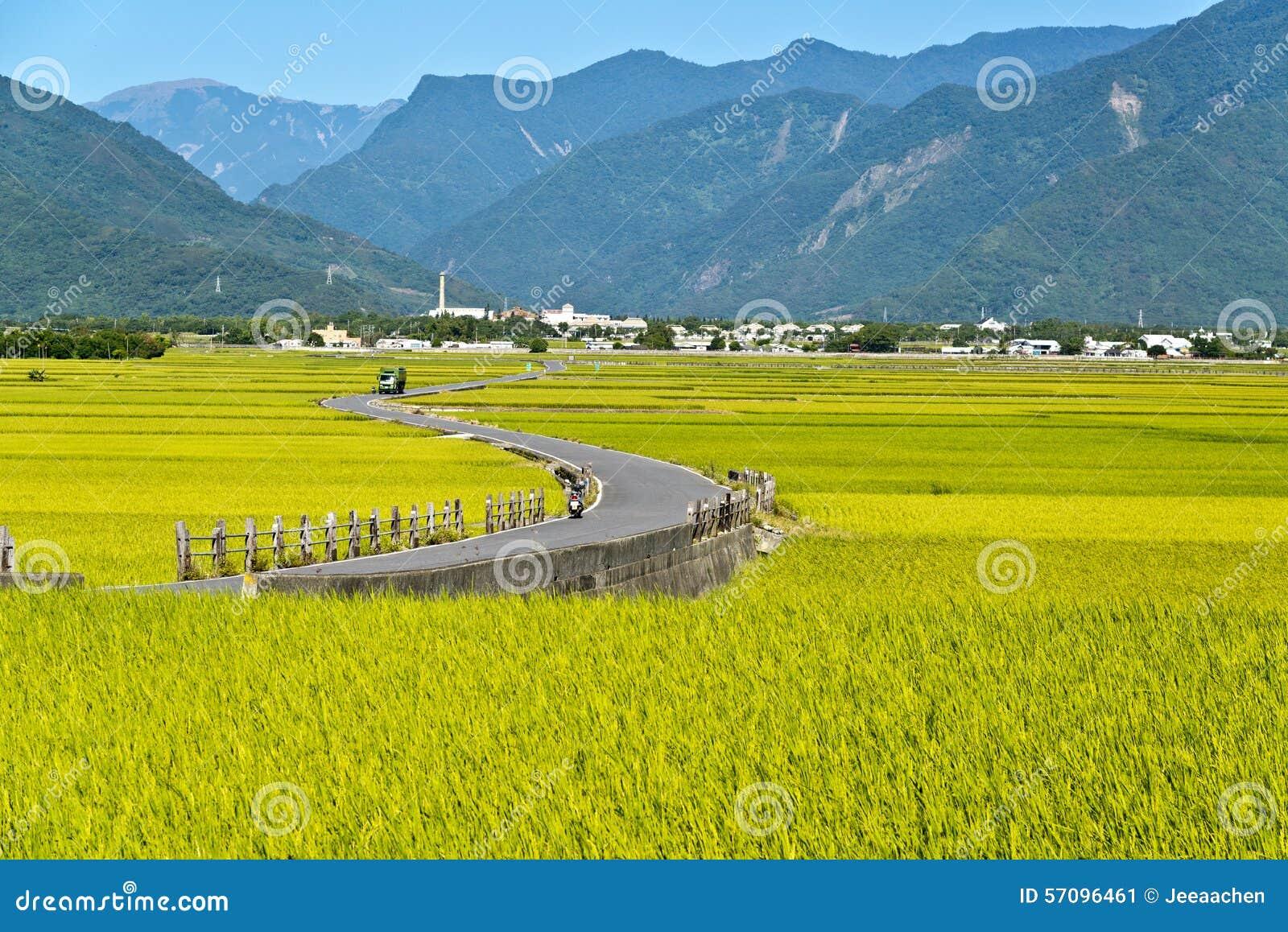 Taiwan lantligt landskap