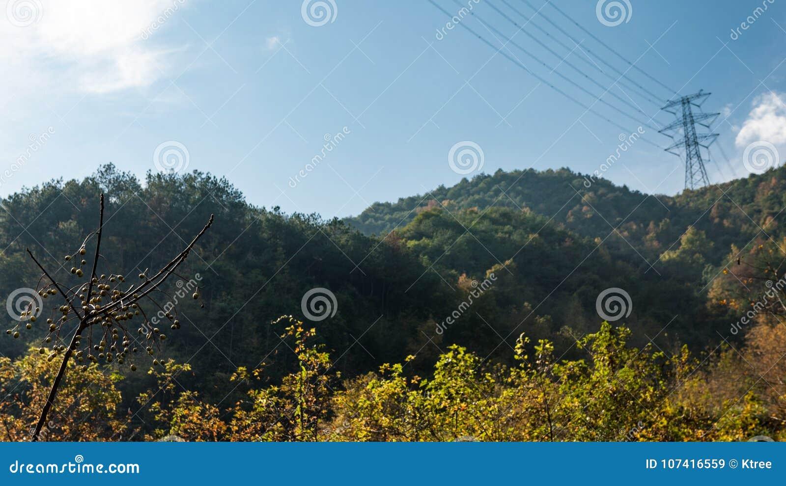 Taizhou jesieni sceneria
