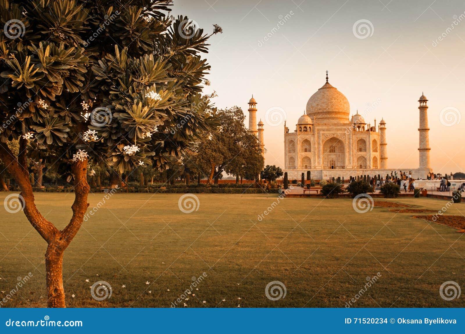 Taj Mahal в Agra, Индии