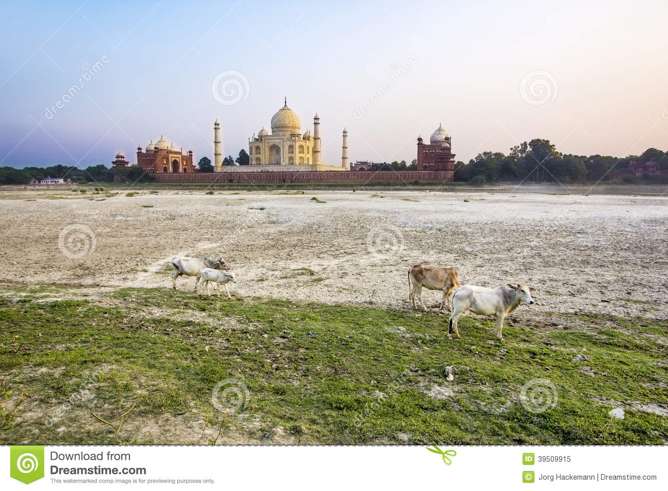 Taj mahal from yamuna river