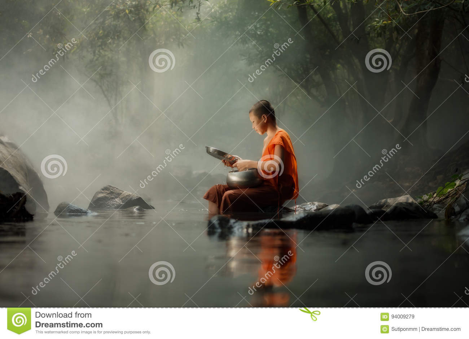 Tajlandia michaelita Mały obsiadanie na rzece w lesie przy lub zatoczce