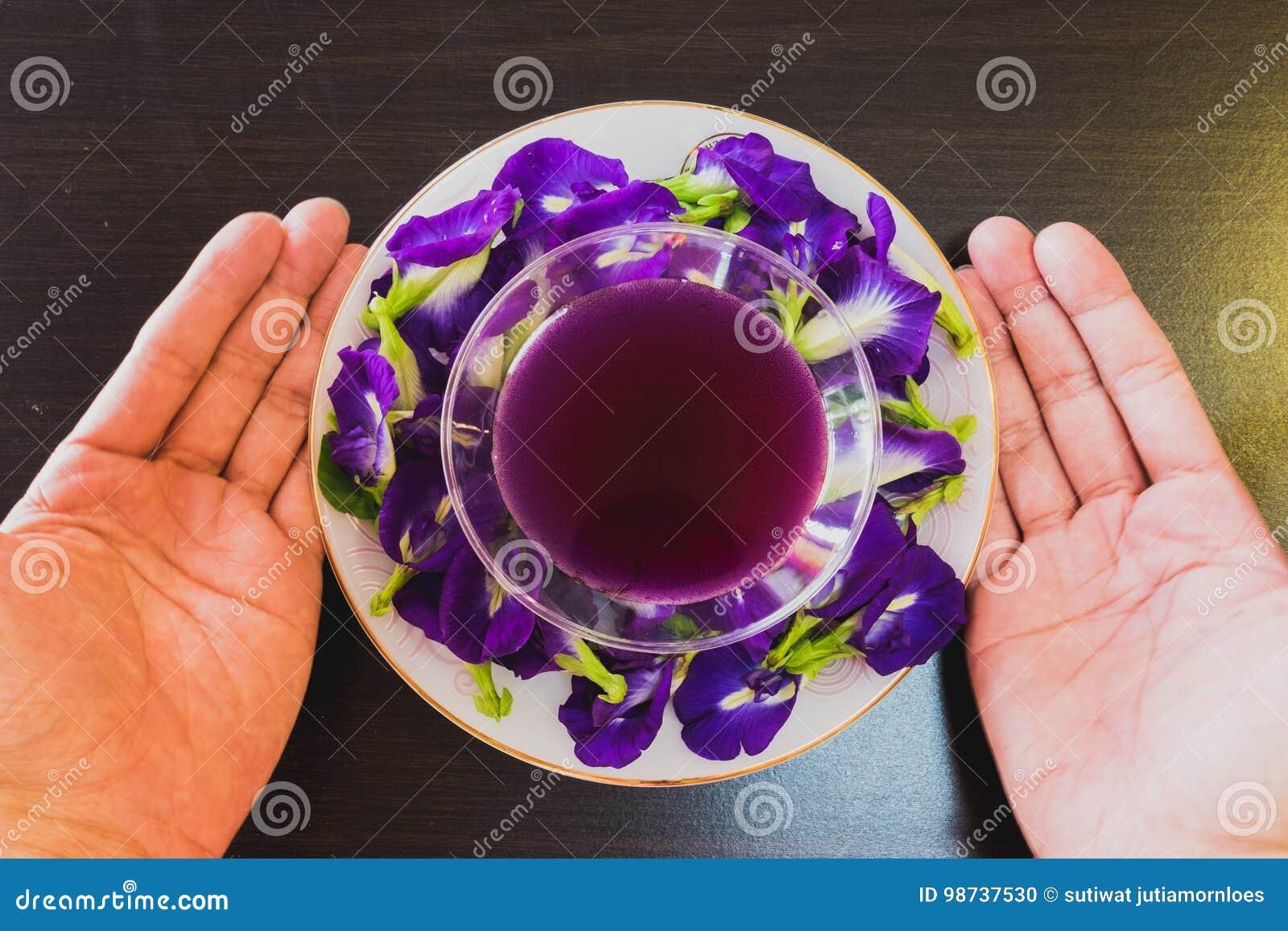 Tajlandia napoju Chan świeży zdrowy ziołowy sok z cytryna soku motyliego grochu kwiatem