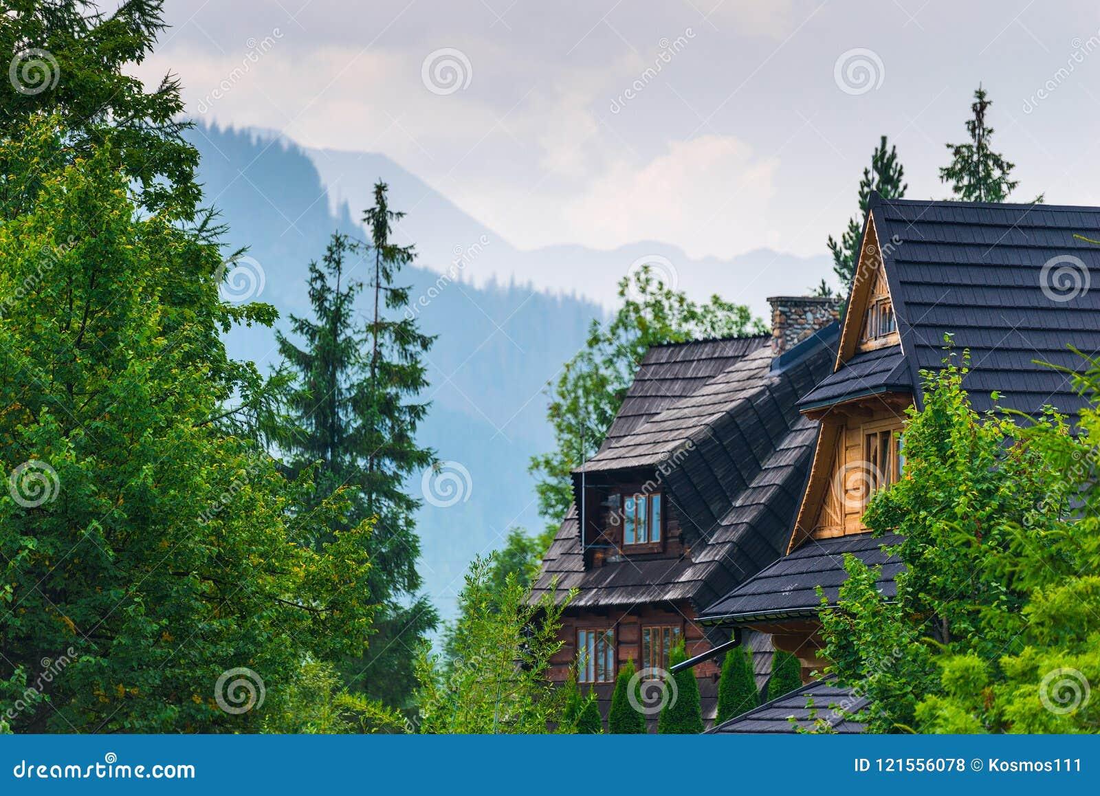 Tak av en villa i skogen med en sikt