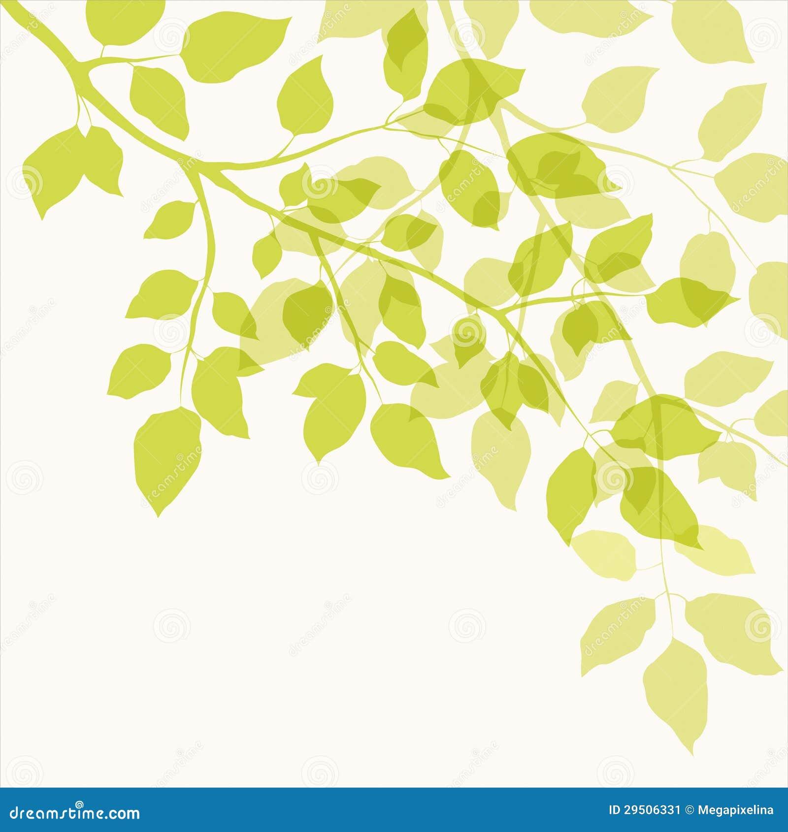 Tak met groene bladeren