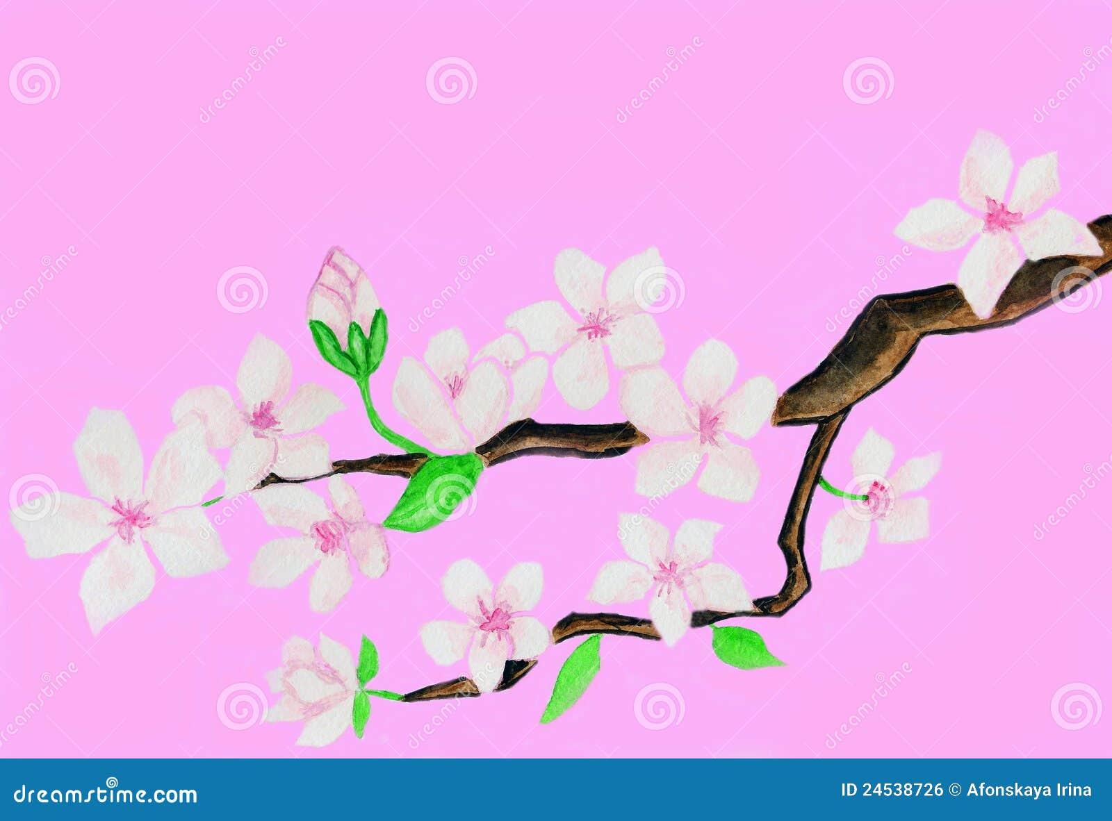 witte achtergrond tekening bloemen - photo #13