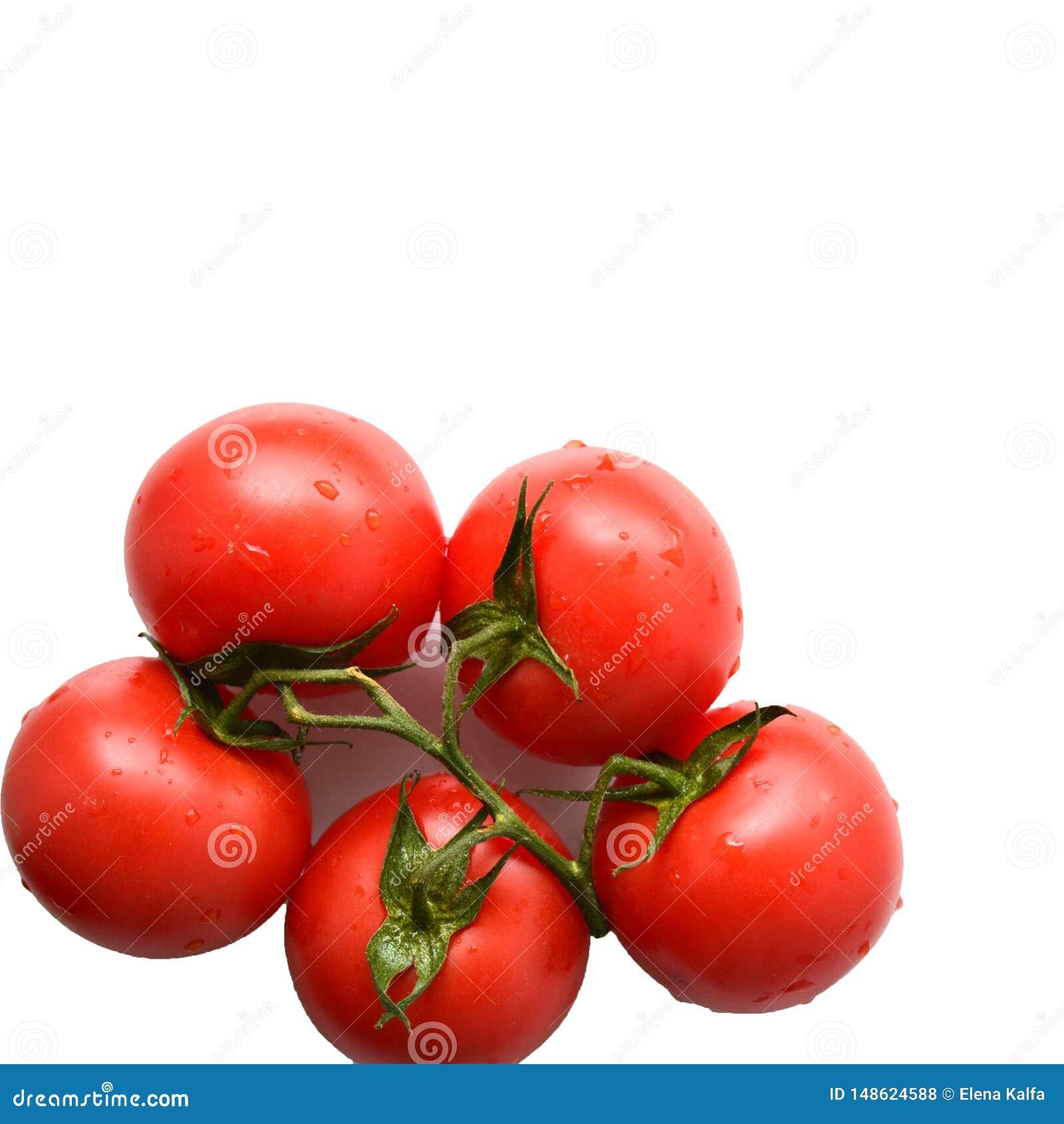 Tak van rode tomaat op een witte achtergrond