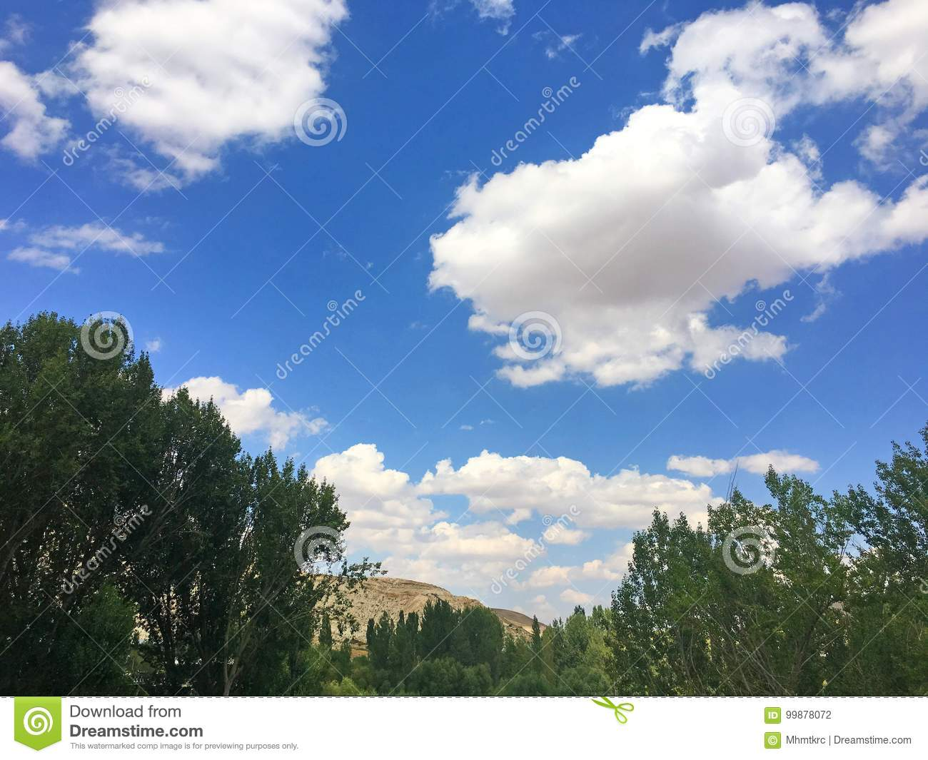 Blue Sky, Clouds and Trees