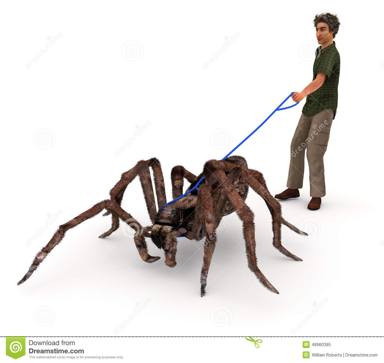 Taking A Spider For A Walk Stock Illustration Image