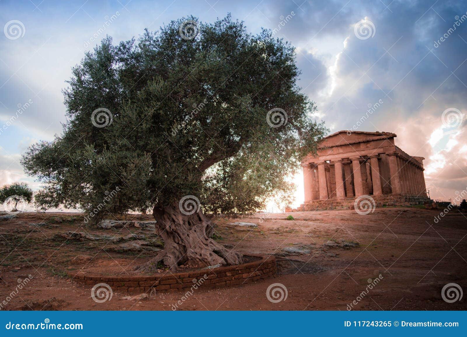 Tal der Tempel von Agrigent - Sizilien