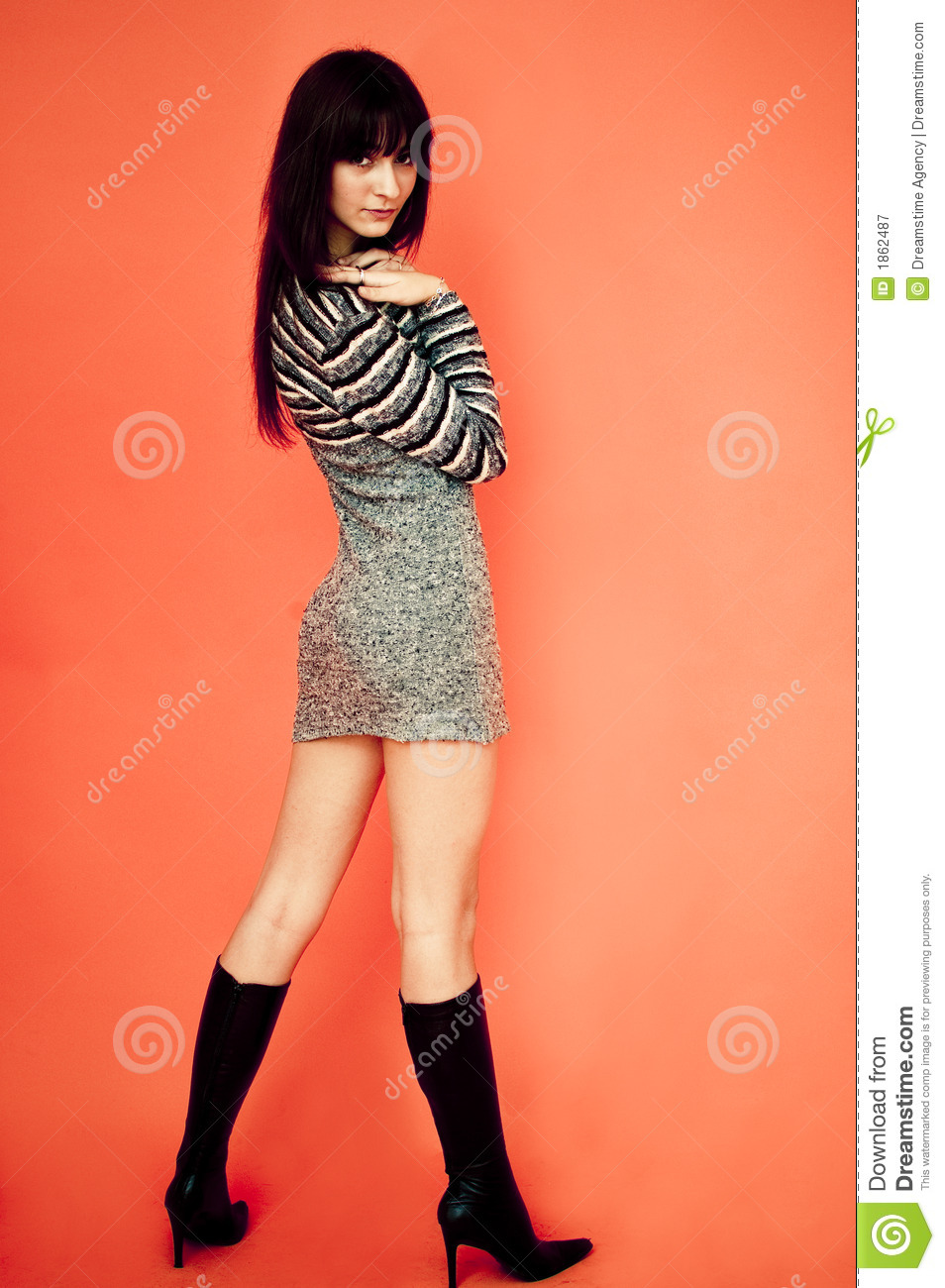 Tall And Slim. Royalty Free Stock Photography - Image: 1862487