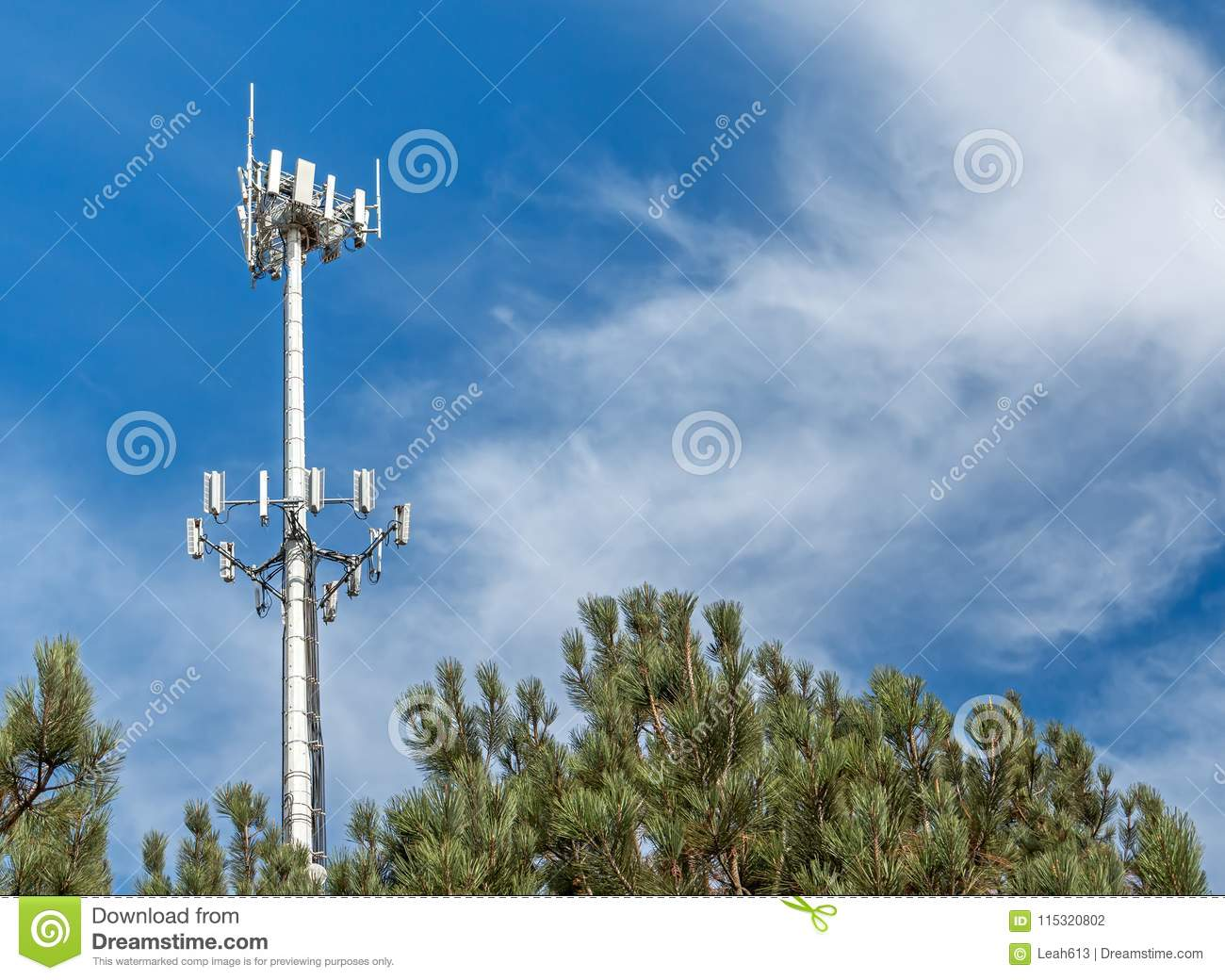 Tall Telecommunication Monopole Tower Behind Pine Trees  Stock Photo