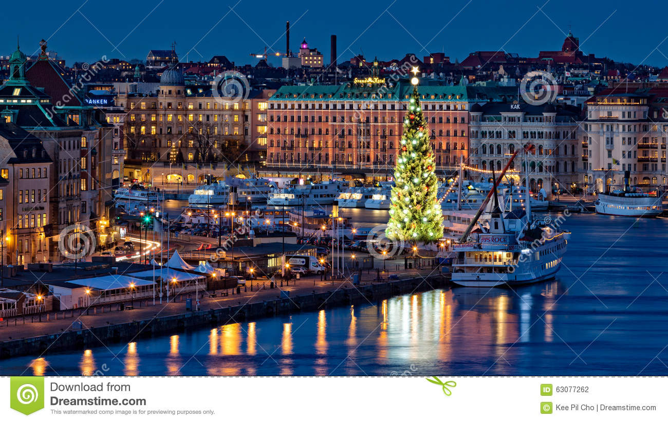 The Tallest Christmas Tree, Old Town, Stockholm, Sweden
