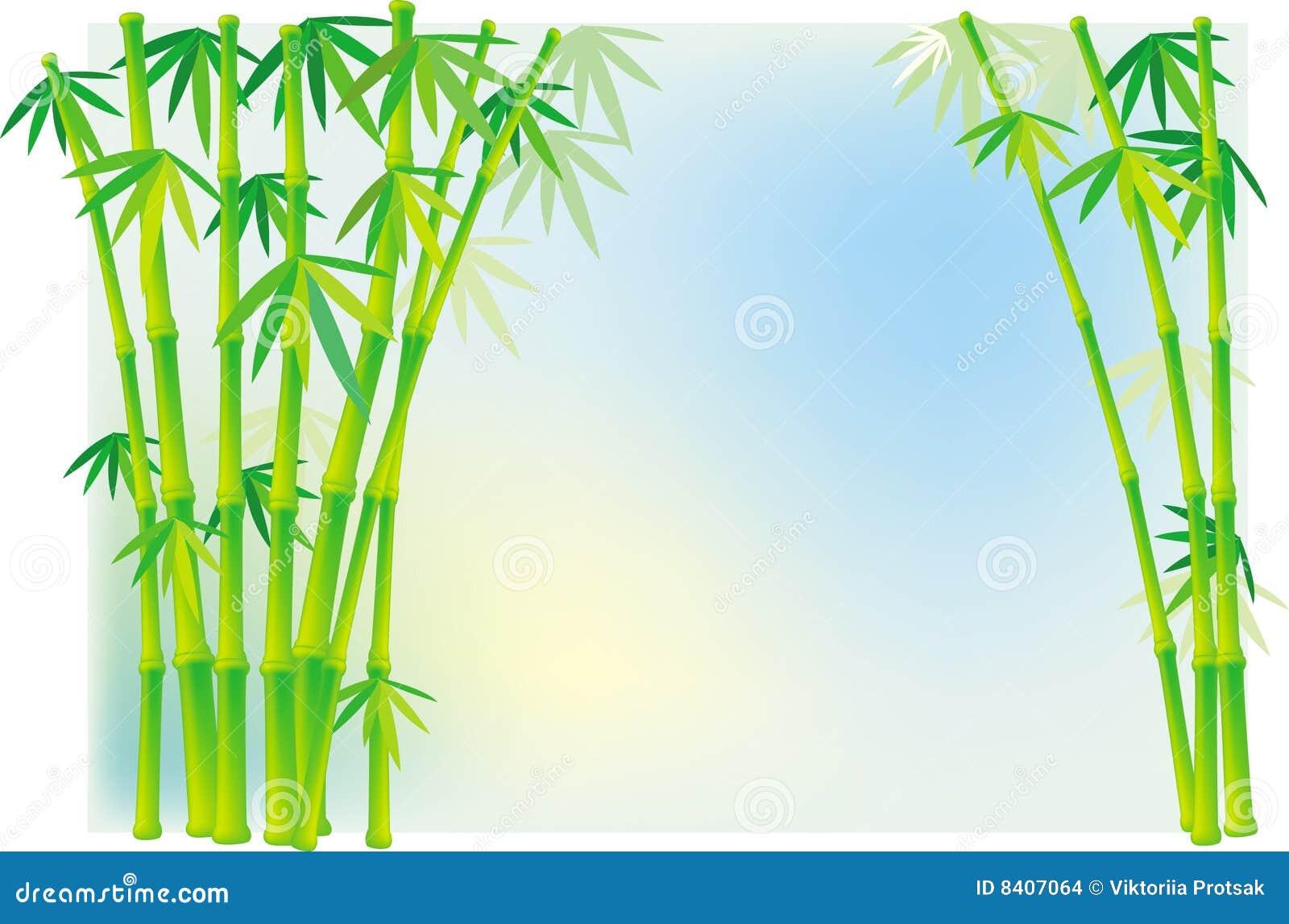 Tallos de bambú