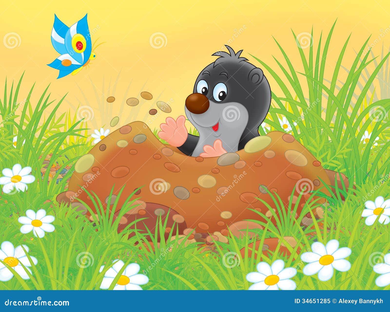 Talpa illustrazione di stock illustrazione di fumetto for Talpa mammifero