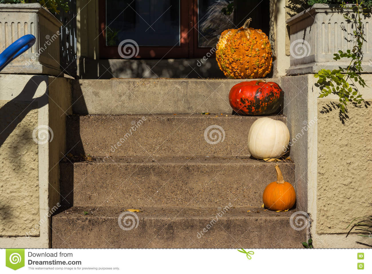 Tamanho diferente Dia das Bruxas Autumn Pumpkins Decoration Porch Steps