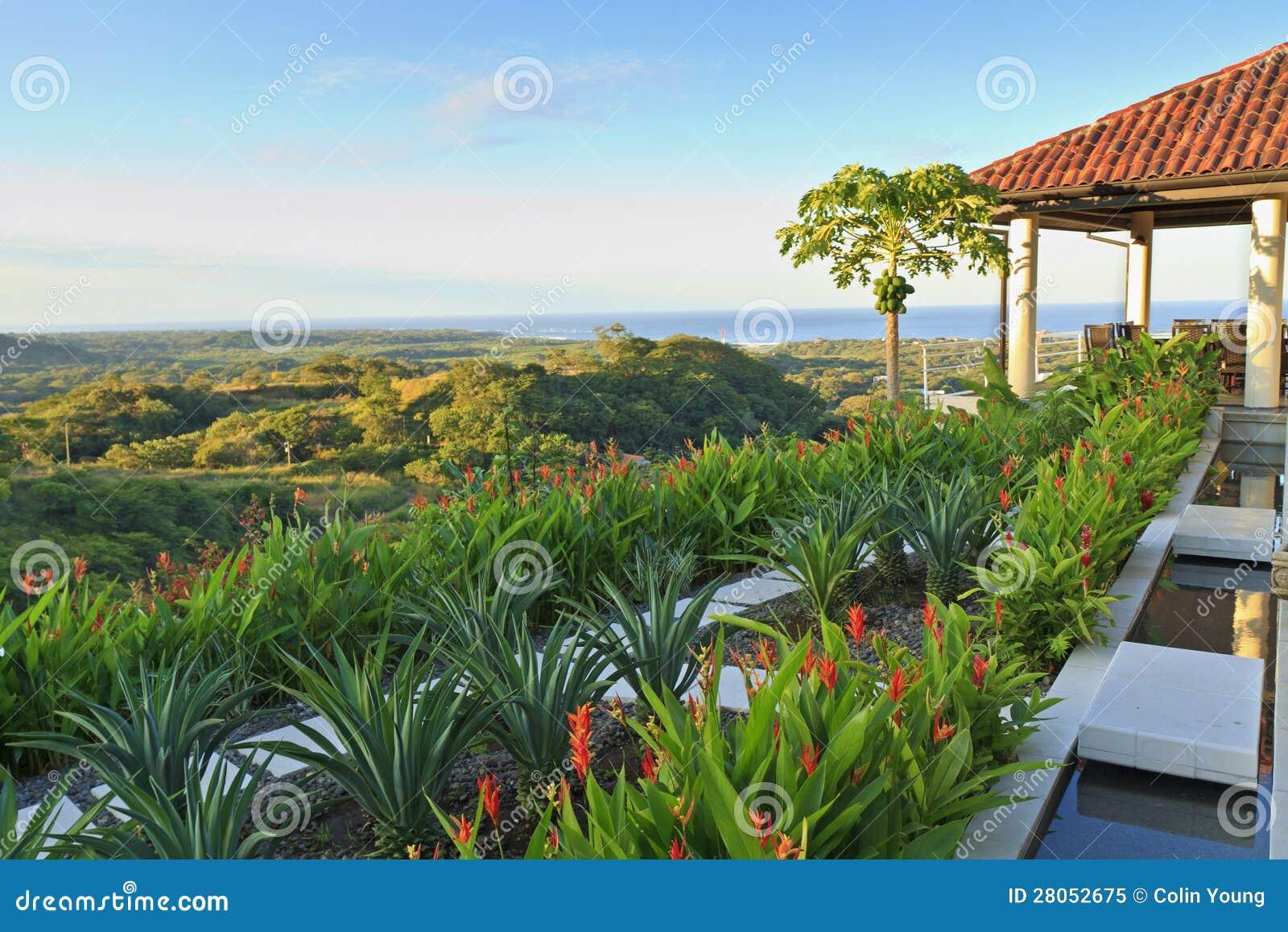 Tamarindo willa i Kokosowy drzewo