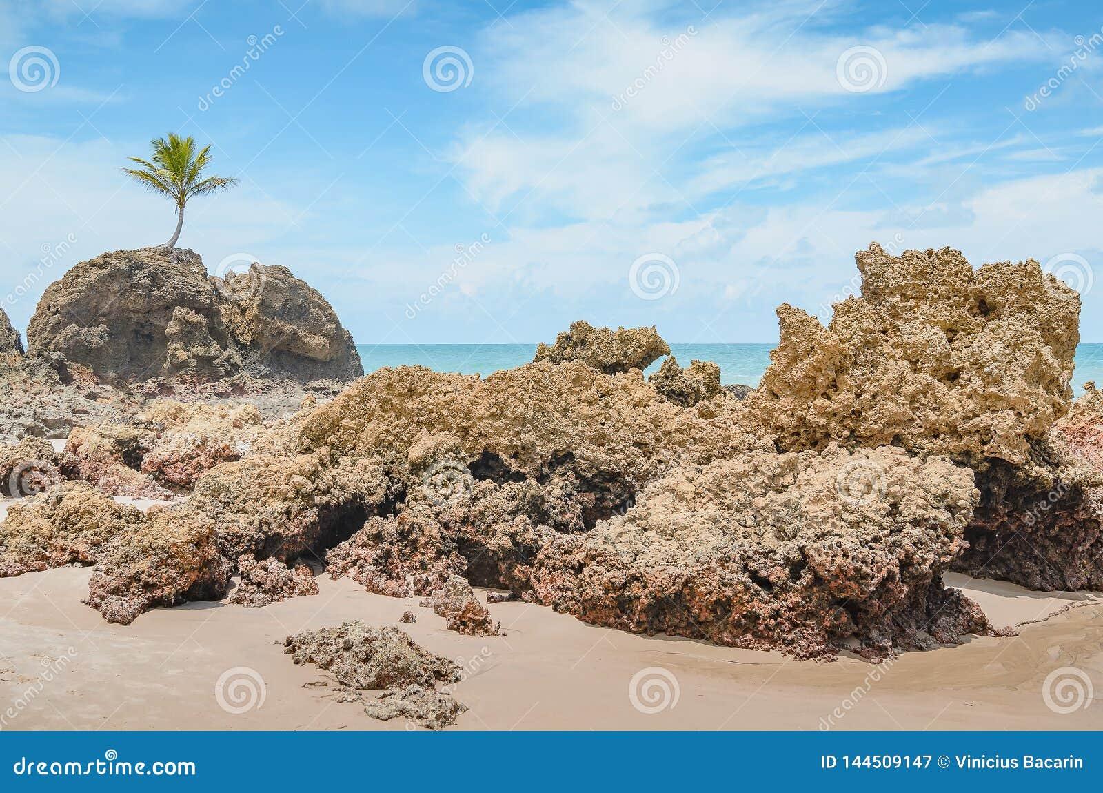 Tambaba | Tambaba beach, City of Tambaba, PB - Brazil