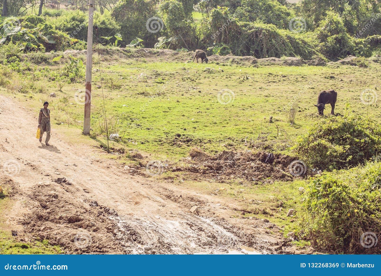 Tamil Nadu, Indien, am 31. Januar 2018: Indische Landschaft