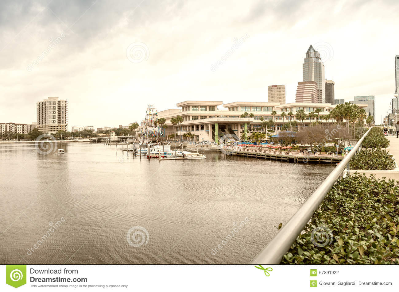 TAMPA, FL - JANUARY 15, 2016: City buildings and skyline. Tampa