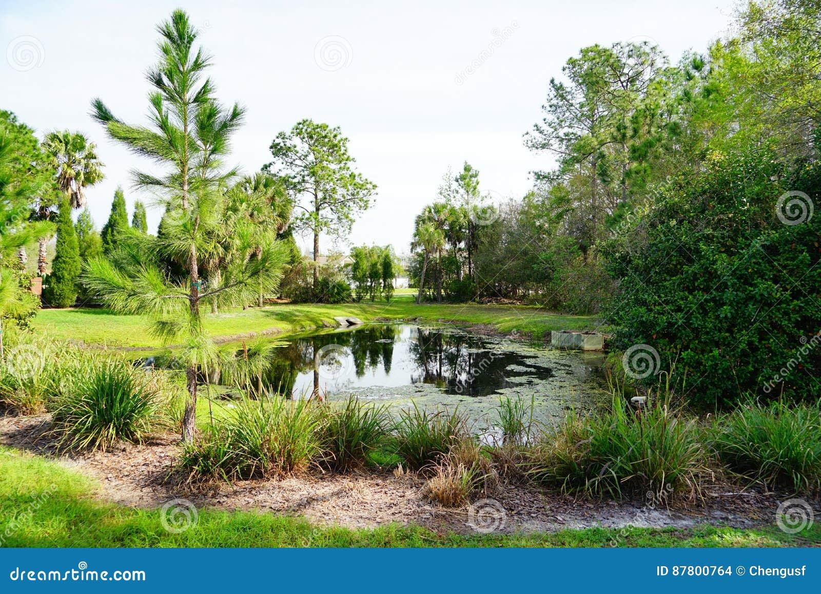 Tampa gömma i handflatan gemenskap