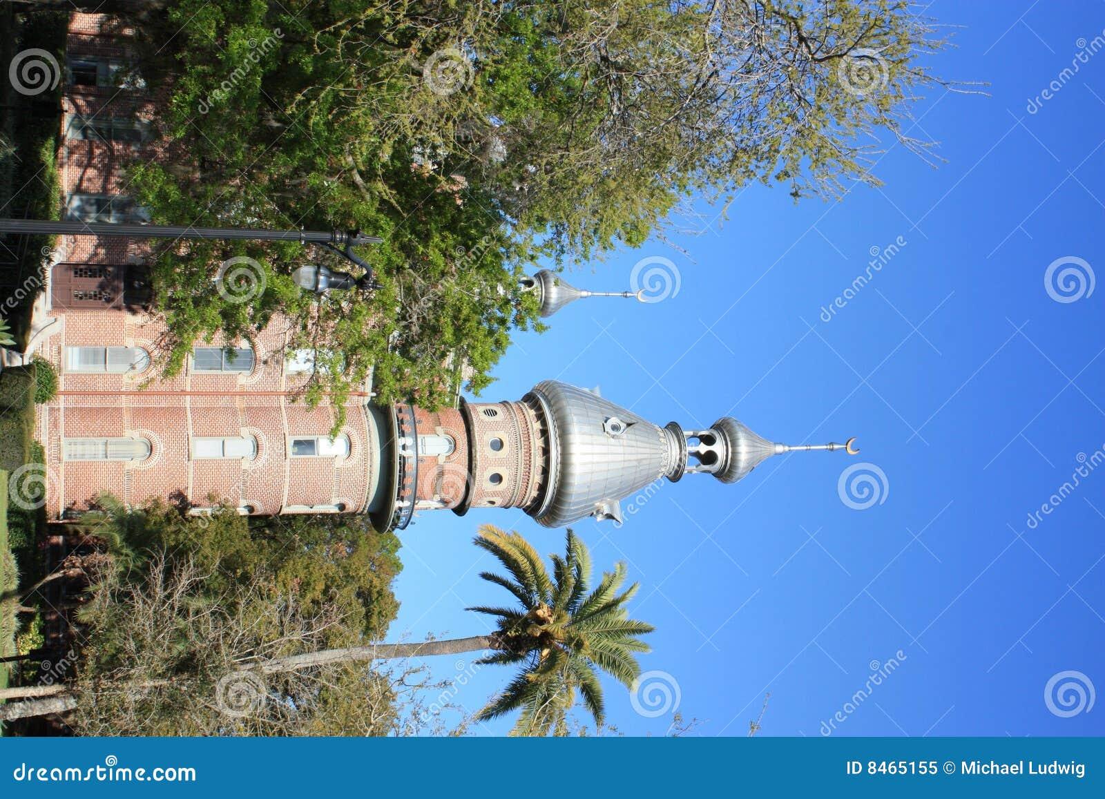 Tampa universitetar