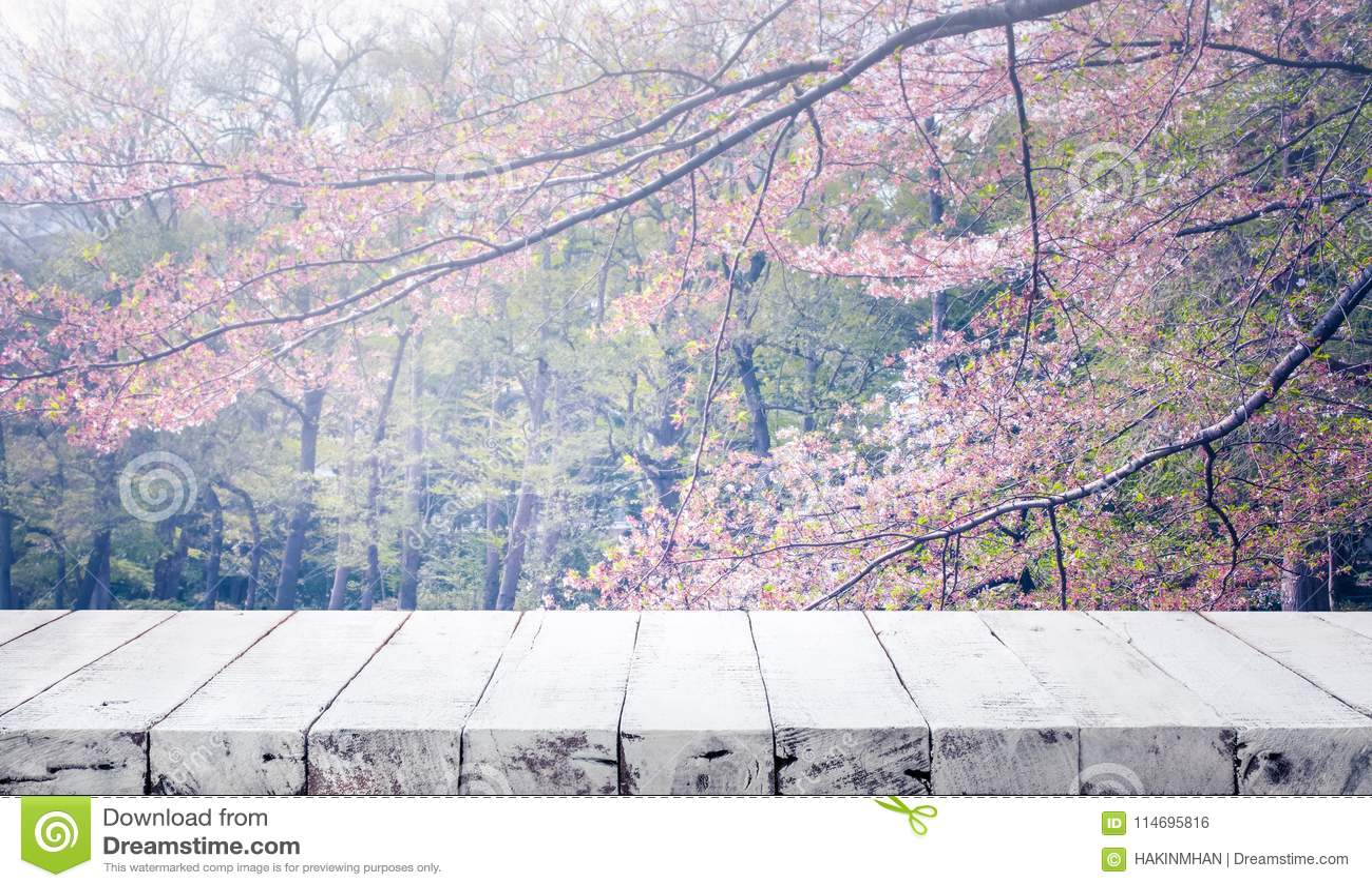 Tampo da mesa de madeira na flor de sakura do borrão no fundo do jardim nave