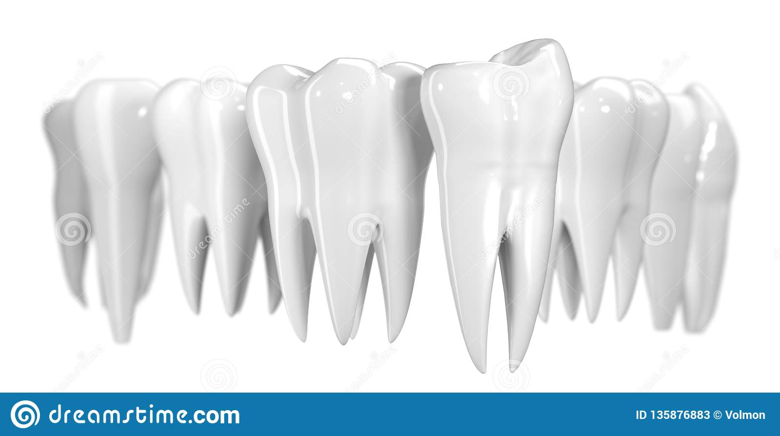 Tandbaner som isoleras på vit bakgrund Sund illustration för tandsymbol 3d av vit emalj och att rota Tandläkekonsthälsa
