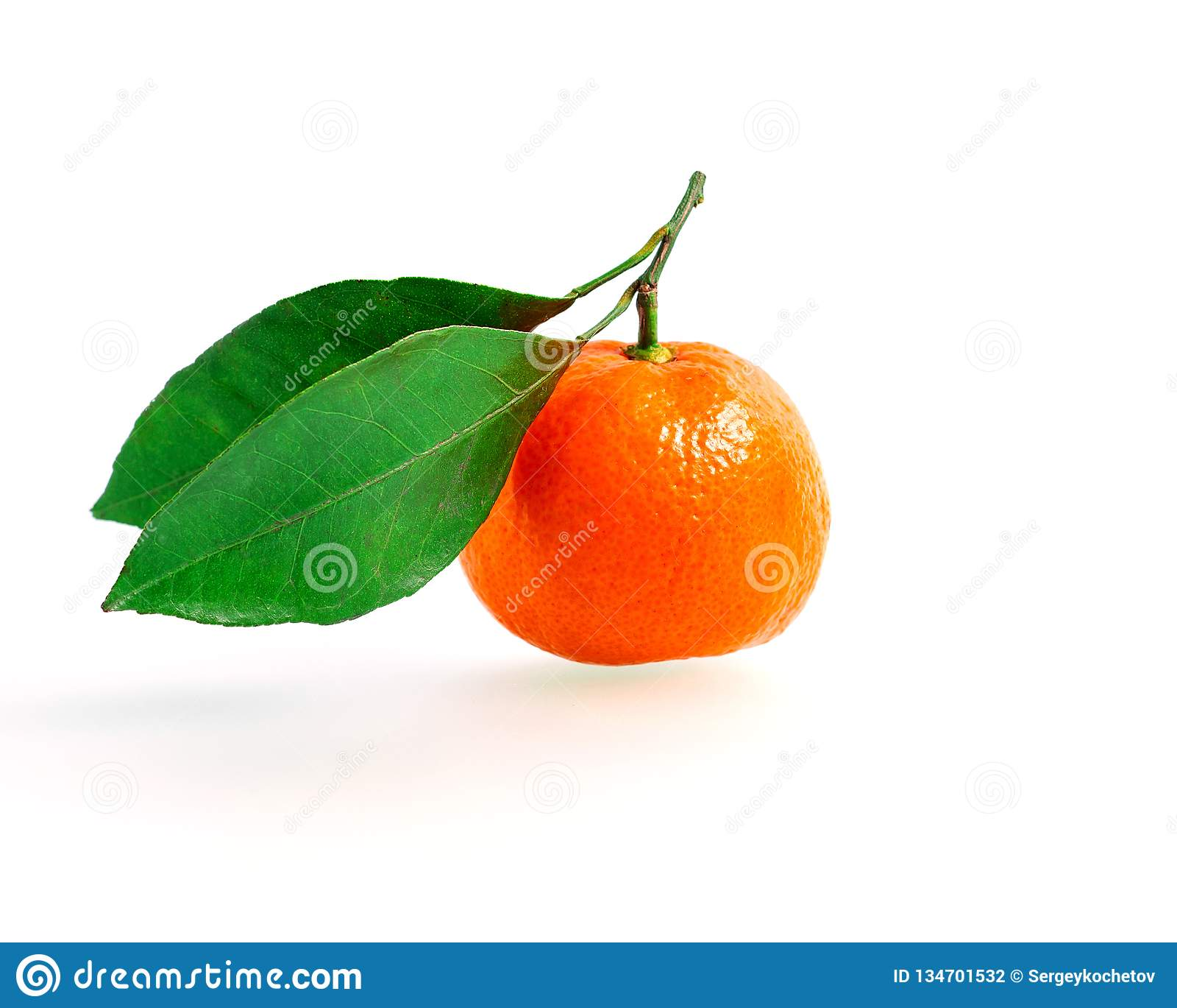 Tangerine или Клементин при зеленые лист изолированные на белой предпосылке