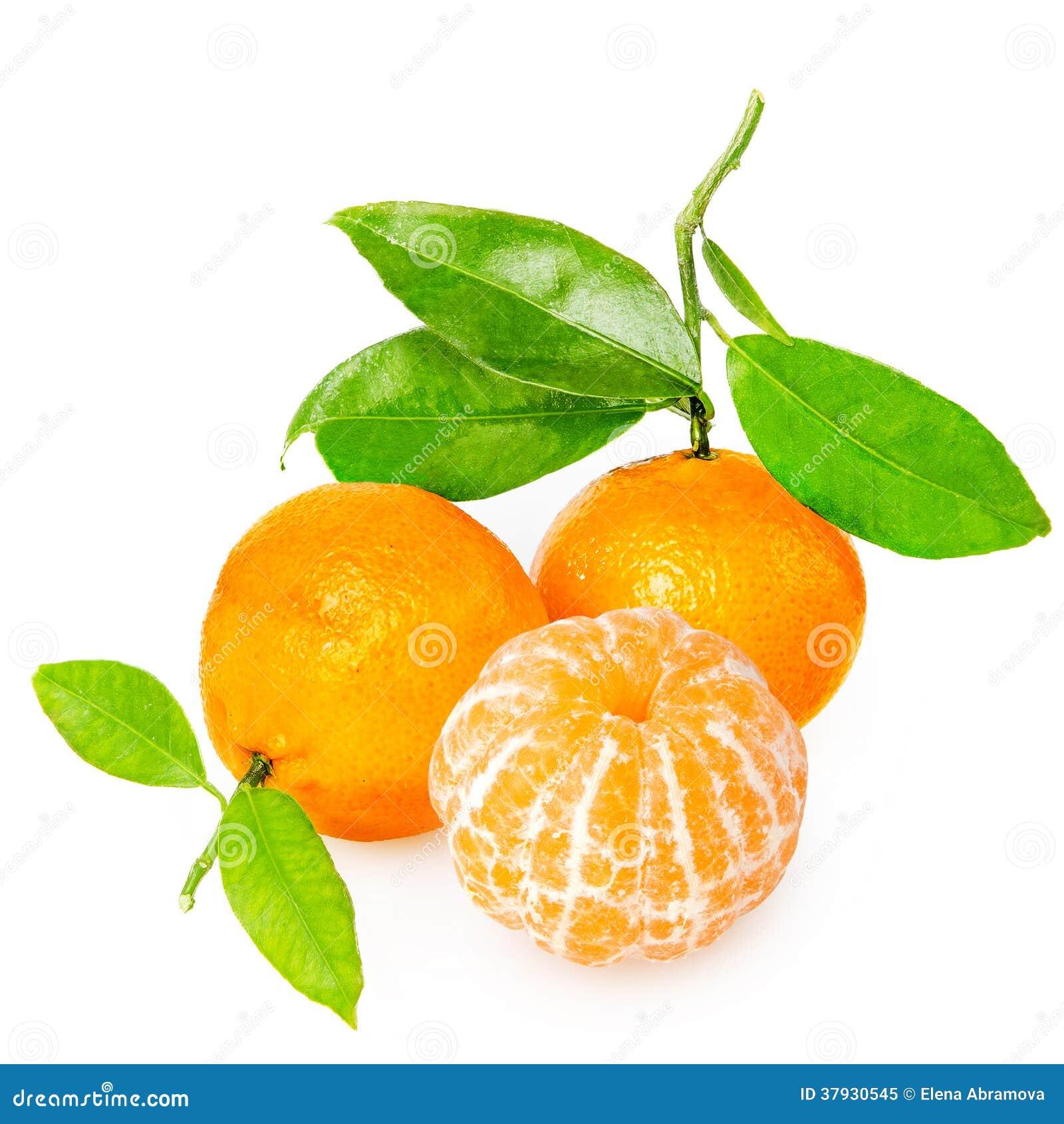 Tangerine с этапами
