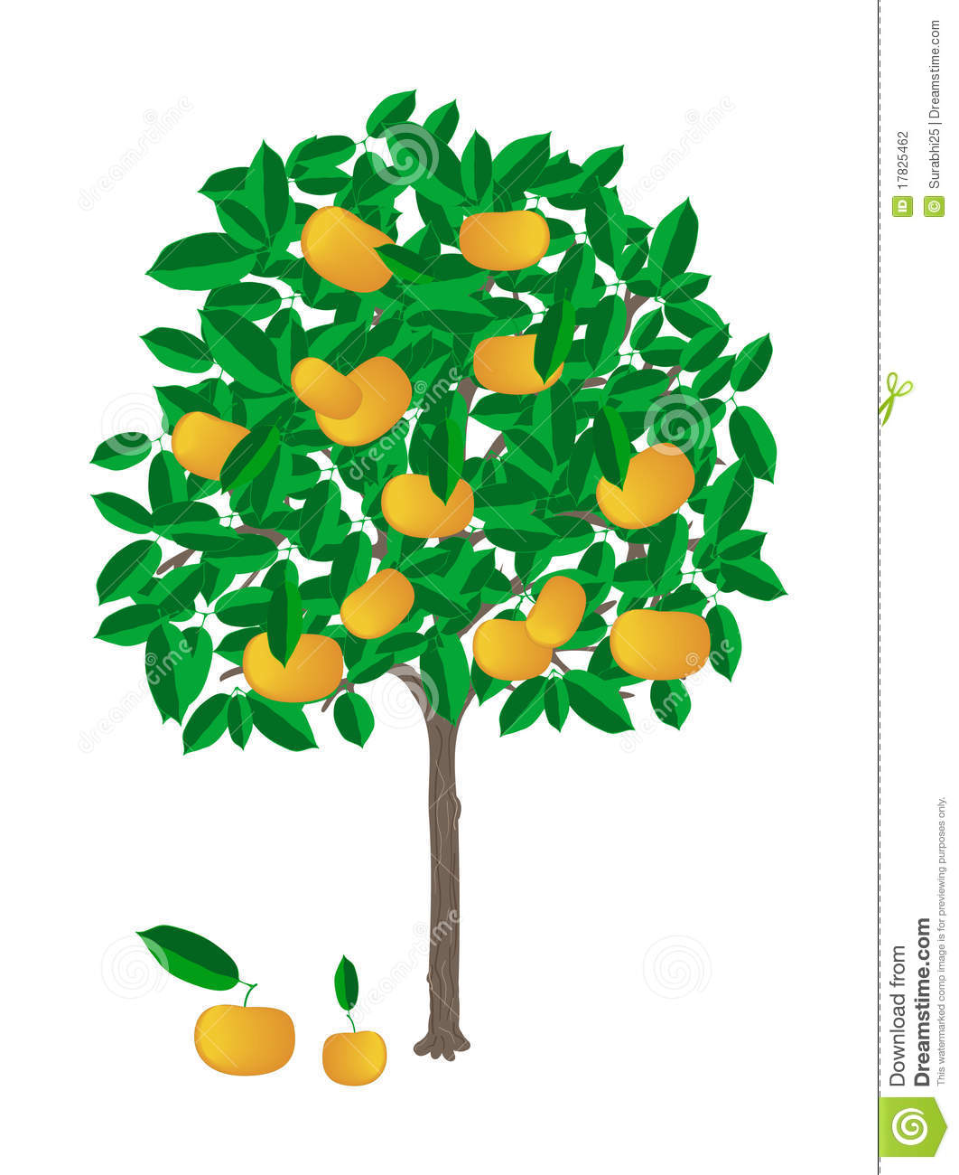 Tangerine Tree Stock Photography - Image: 17825462