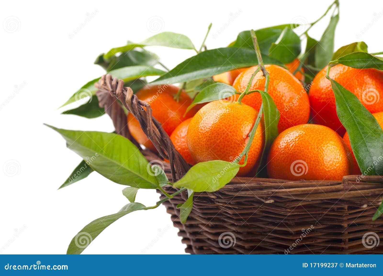 Tangerinen
