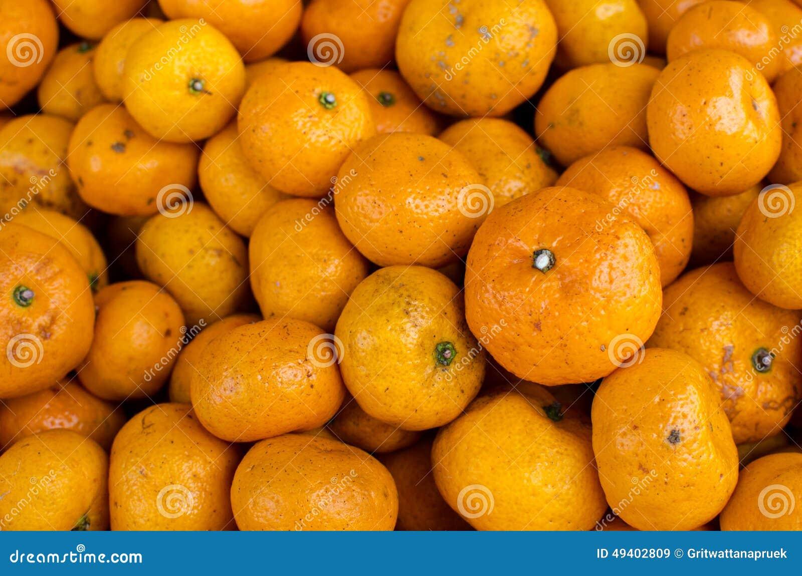 Download Tangerinen stockbild. Bild von botanisch, import, gesund - 49402809