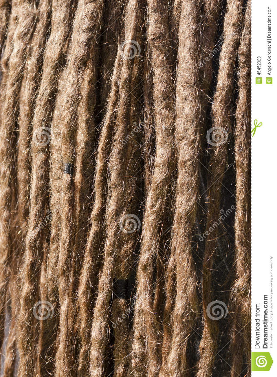 Tangle of dreadlocks. Closeup of a rasta hair